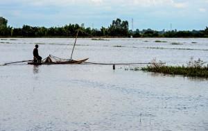 Không có mùa nước nổi, hạn hán sẽ đến sớm và khốc liệt hơn ở ĐBSCL
