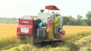 Hội thảo khôi phục độ phì nhiêu cho đất canh tác lúa ở các huyện phía Đông