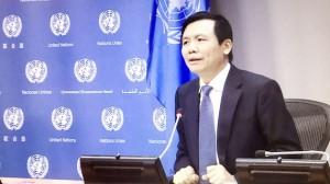 Nỗ lực của Việt Nam trong thúc đẩy hòa bình bền vững