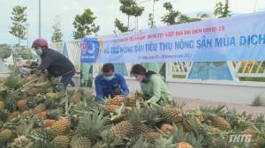 Tỉnh Đoàn Tiền Giang hỗ trợ nông dân tiêu thụ nông sản